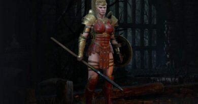 Diablo II: ошибка исчезновения воскрешенного персонажа 'идентифицирована', исправление выходит сегодня